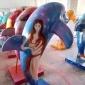 佛山玻璃�雕塑、供��海洋公�@海豚雕塑�[件